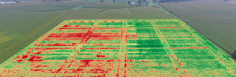 Crop Consulting image